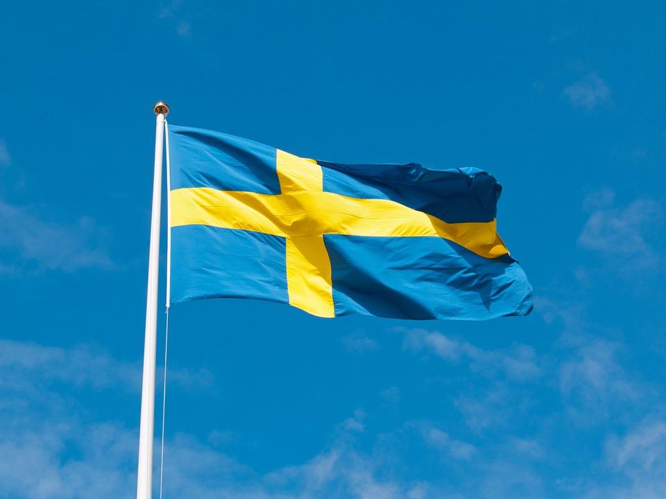 Посол Швеции примет участие в Празднике чтения в Нижнем Новгороде