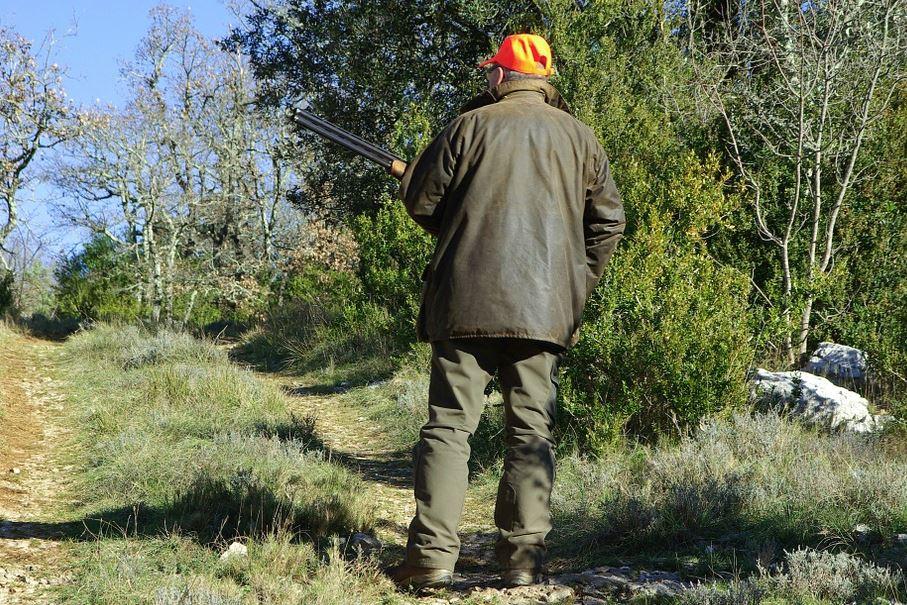 Ответственность за браконьерство ужесточили в Нижегородской области