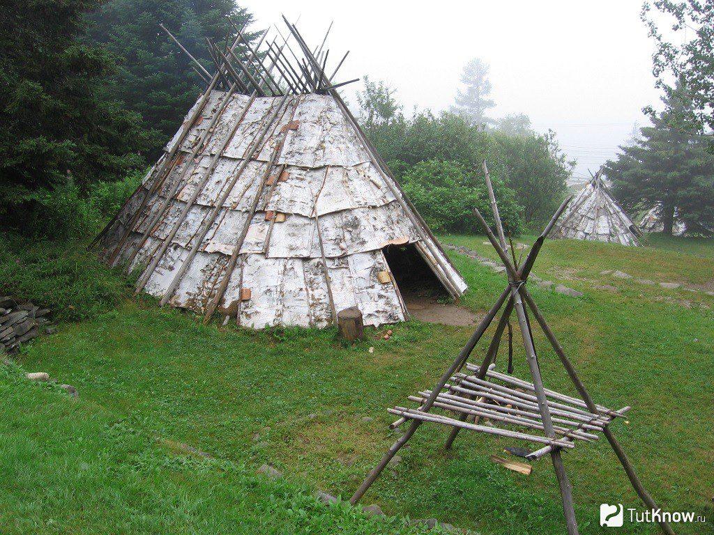 Рай в шалаше. Семейная пара поселилась прямо в шалаше в одном из дворов Нижнего Новгорода