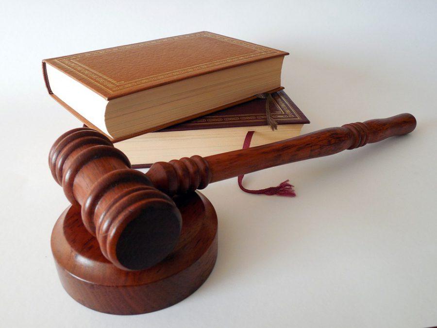 Нижегородцу, который «заминировал» роддом № 1, огласили приговор