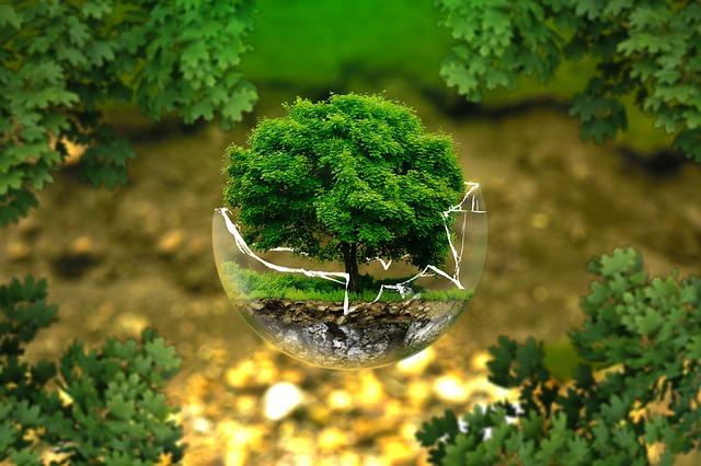 Глеб Никитин: «Голосование за «экологические задачи» для будущего министра экологии продлено до 3 декабря»