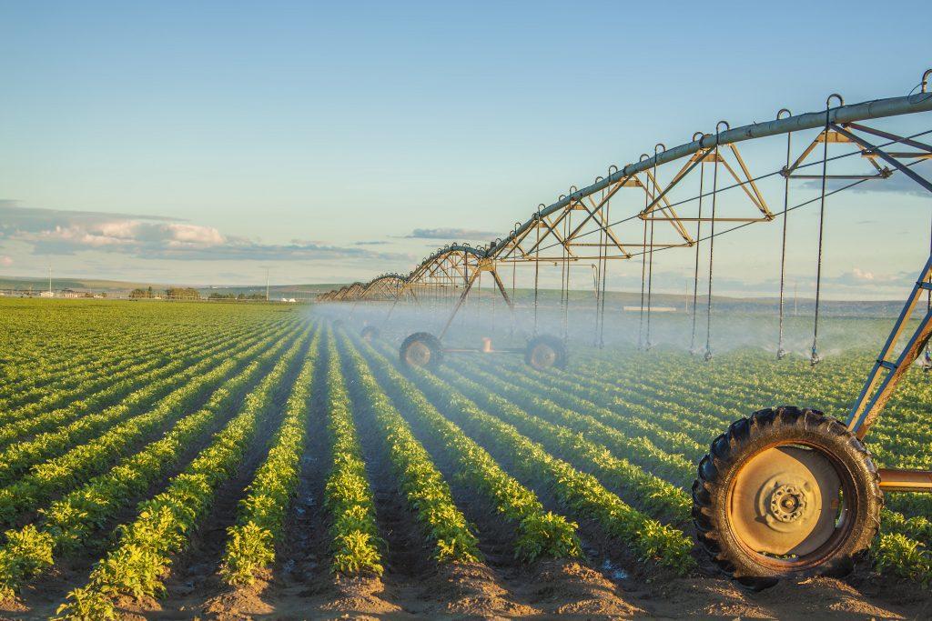 Более 600 гектаров мелиорируемых земель введено в сельхозоборот в 2018 году в Нижегородской области