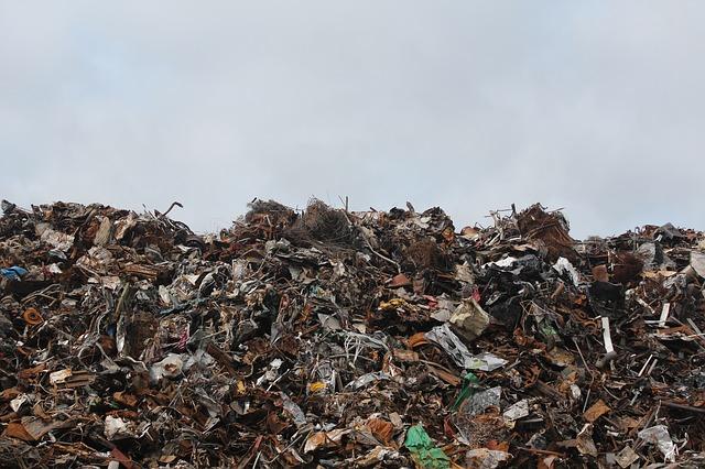 В Нижегородской области проверят, как вывозят мусор