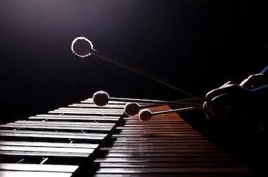 Уникальный ударный инструмент представят в Нижегородской консерватории