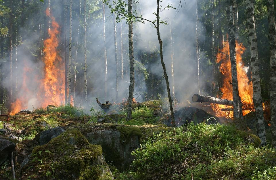 За сутки в Нижегородской области произошло 3 случая возгорания сухой травы