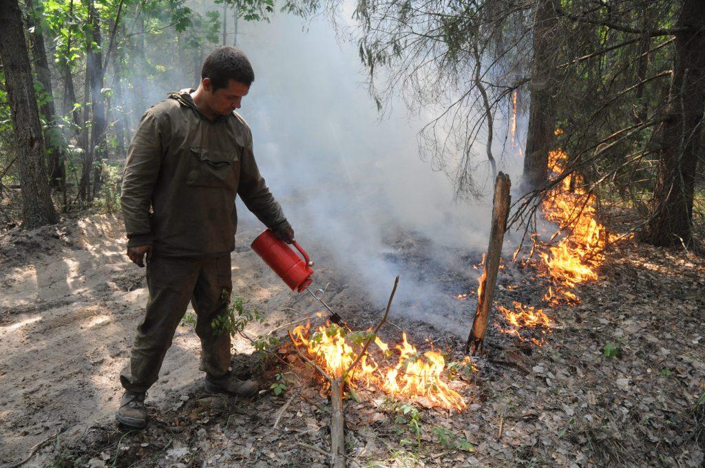 Стоп, огонь! Как не дать разгуляться природной стихии