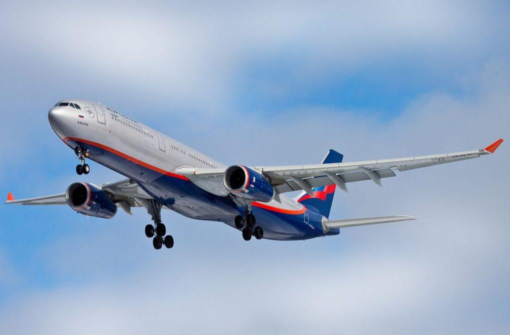 Двух пьяных авиадебоширов в Нижнем Новгороде сняли с самолёта (ВИДЕО)