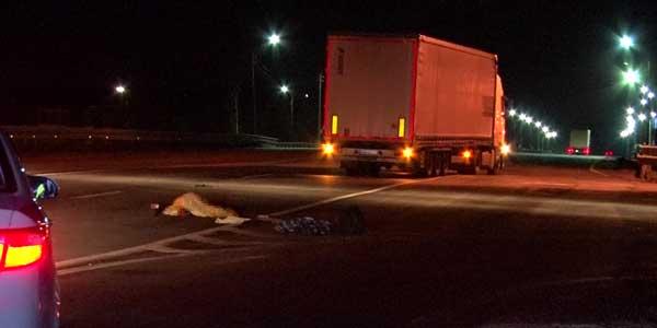 Фура насмерть сбила пешехода на Южном обходе под Дзержинском